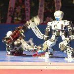 For Dummies: Diy robot ideas | Last places